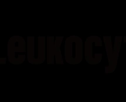 資訊安全守門員-「Leukocyte-Lab盧氪賽忒」訪談